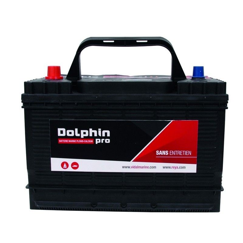 BATTERIE DOLPHIN PRO